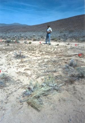X 15 Monument Site
